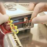 Príprava vzoriek pupočníkovej krvi